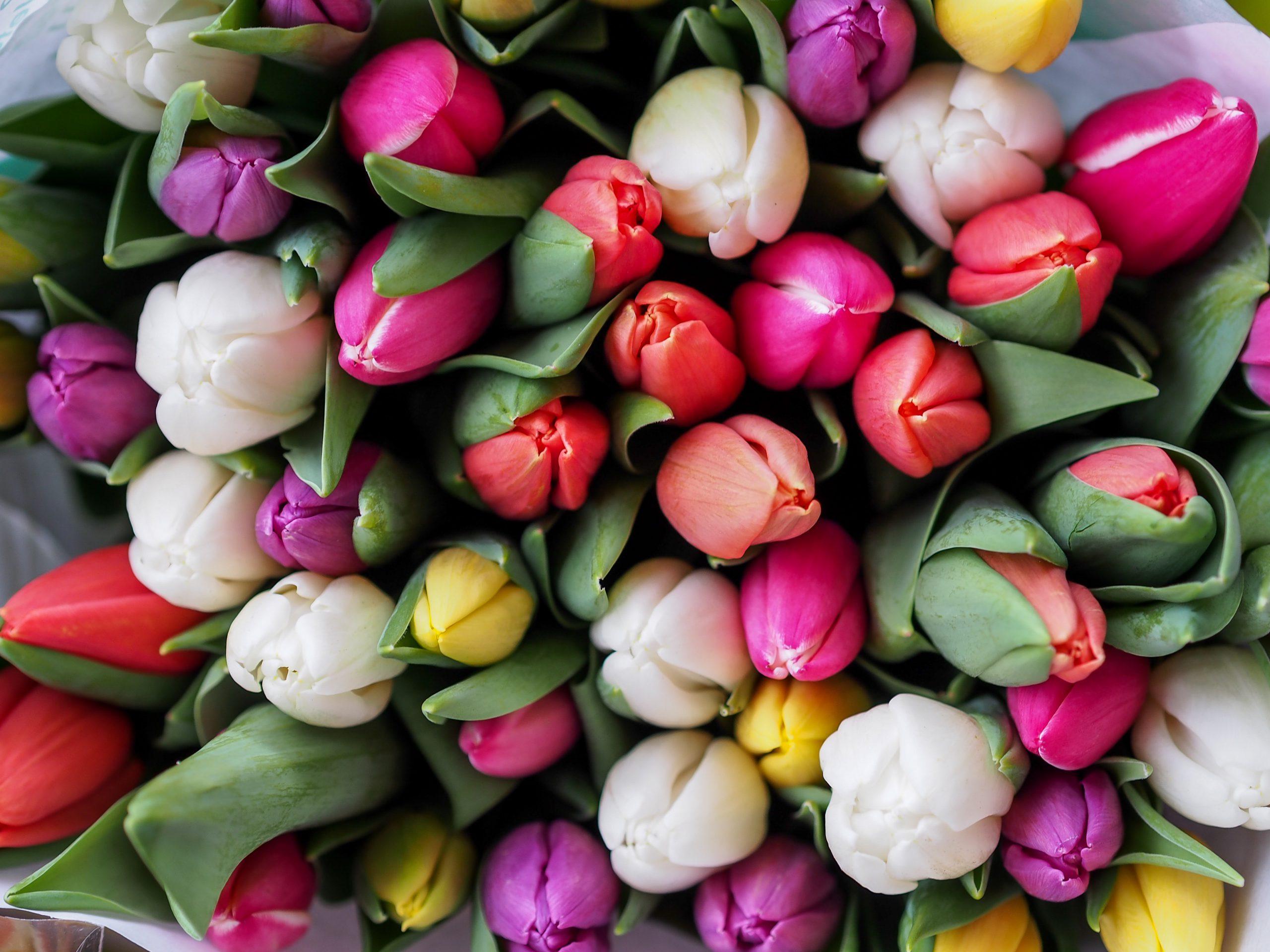 Velykos – daugiau nei pavasarinė šventė